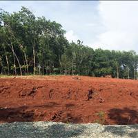 Bán đất nền đẹp tại Hưng Chiến, quận Bình Long - Bình Phước giá 290 triệu