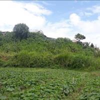 Bán đất cửa ngõ vào thành phố đường An Bình, Phường 3, Đà Lạt