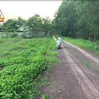 Hot - cần bán 7300m2 đất phường Phước Tân gần đường Võ Nguyên Giáp, chính chủ SHR giá rẽ