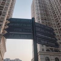 Bán căn hộ cao cấp ở ngay 108m2, 3 phòng ngủ dự án Hòa Bình Green City 505 Minh Khai, full nội thất
