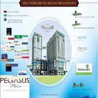 Cho thuê căn hộ tại Pegasus Plaza Biên Hòa - Đồng Nai (thích hợp cho các chuyên gia nước ngoài)
