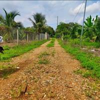 Đất vườn 2000m2 thành phố  Long Khánh - Đồng Nai giá 1.6 tỷ