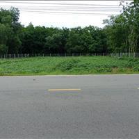 Đất mặt tiền 34x55m đường nhựa 20m xã Phú Mỹ Hưng - Củ Chi 3,8 triệu/m2 6,8 tỷ