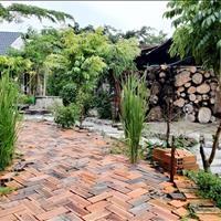 Cho thuê mặt bằng sân vườn mới, đẹp, 6 triệu/tháng tại Võ Xu, Đức Linh