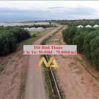 Bán đất Bắc Bình - Bình Thuận giá 65 nghìn/m2, sổ hồng riêng 7544m2 nằm ngay đường liên huyện