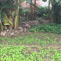 Bán mảnh đất diện tích 40.3m2 tại Ba Chữ - Vân Nội - Đông Anh - Hà Nội