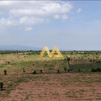 Bán đất vườn Bình Thuận Nam Á Garden giá rẻ 50.000đ/m2 - đã có sổ hồng
