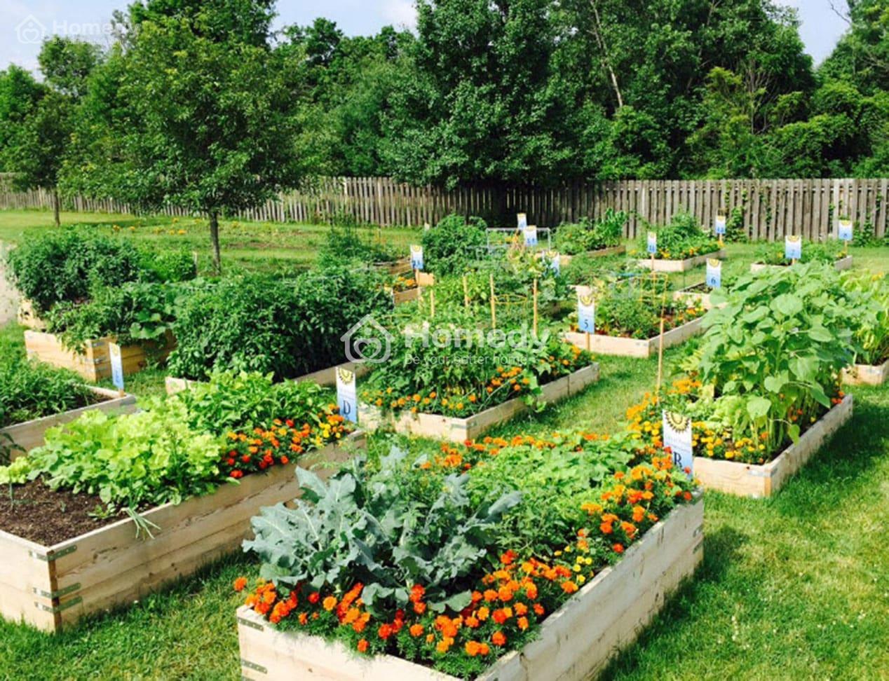 Bất động sản xanh chiếm ưu thế