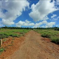 Gia đình anh em có miếng đất rộng 1120m2, với 13m ngang nay muốn bán tại trung tâm Bảo Lộc