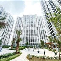 Cho thuê căn hộ cao cấp tại Vinhomes Smart City, Đại Mỗ, Đại lộ Thăng Long, Nam Từ Liêm, Hà Nội