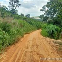 Đất diện tích lớn tại Tà Nung, Đà Lạt thích hợp đầu tư