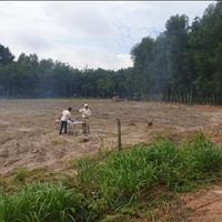 Bán đất Tân Uyên giá hơn 3 tr/m2 đối diện khu Vsip 2 khu dân cư đông an ninh tốt