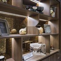 Bán căn hộ Hoàng Cầu Skyline 3 phòng ngủ 139m2 nhà đẹp giá 6,125 tỷ