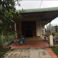 Bán căn nhà trệt diện tích 312m2 đường sau Nguyễn Văn Ni, Củ Chi giá 4,5 tỷ