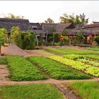 Bán đất huyện Củ Chi - Thành phố Hồ Chí Minh giá 600 triệu