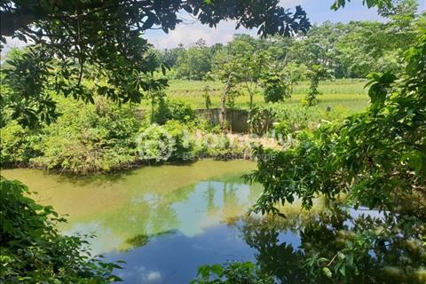 Bán 20 sào đất tại thôn 9 Ba Trại làm nghỉ dưỡng giá cực rẻ