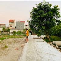 Cần bán gấp 45m2 đất Đa Tốn Gia Lâm, Hà Nội, đường ô tô ngay gần Vinhomes Ocean Park
