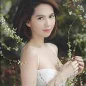 Nguyễn Hoàng Kim Loan