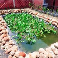 Bán nhà vườn, second home Đất Đỏ - Bà Rịa Vũng Tàu giá 2.25 tỷ
