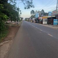 Bán đất mặt tiền đường An Viễn, Trảng Bom ngay cổng KCN Giang Điền, 6x43m sổ hồng riêng thổ cư 100m