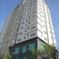 Bán gấp căn hộ Samland River View, đường D1, giá tốt, chỉ 5 phút đi bộ đến ga Metro