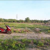 Chủ đang kẹt vốn bán rẻ đất cây lâu năm, đường ô tô, 800 triệu/1000m2, Vĩnh Thanh, Nhơn Trạch