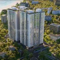 Cần tiền bán lại căn hộ Vũng Tàu Pearl, view đẹp giá hợp đồng, thanh toán theo tiến độ