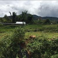 Đất làm được bìa đỏ và quy hoạch đất ở, Sa Pa, Lào Cai