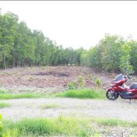 Chủ kẹt tiền bán lô đất rất đẹp, 774m2, giá 1.9 tỷ, đường ô tô, Vĩnh Thanh, Nhơn Trạch