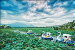 Dự án Vườn Vua Resort & Villas Phú Thọ - ảnh tổng quan - 2