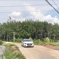 Bán đất 22.560m2 Xã Trị An - Huyện Vĩnh Cửu