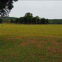 Đất vườn Bình Thuận giá cực kì rẻ chỉ 60.000vnd/m2