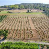 Bán đất nông nghiệp chỉ 60 nghìn/m2 khu đất gần dự án lớn và 3 tuyến đường quy hoạch trọng điểm