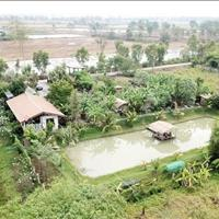 Bán rẻ miếng đất làm nhà vườn, 420m2 giá 730 triệu