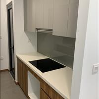 Cho thuê căn hộ Eco Green Quận 7, 2 phòng ngủ, giá 14 triệu/tháng