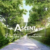 Bán căn hộ Ascent Garden Homes chuẩn Nhật 5 sao chỉ 899 triệu