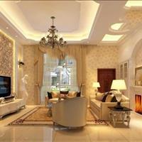 Bán căn hộ tháng 11 Ascent Garden Homes đang nhận giữ chỗ giá 40 triệu/m2