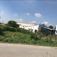 Gia đình chuyển về Sài Gòn sống còn miếng đất vườn 200m2, SHR đang xin chuyển lên thổ cư, giá 300tr