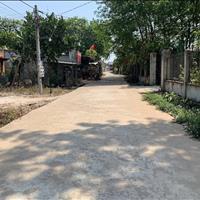Đất đẹp và 200 gốc chanh, diện tích 1500m2, giá 960 triệu sổ riêng Vĩnh Tân, Vĩnh Cửu