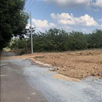 Bán gấp đất sổ riêng đất gần mặt tiền DT 741, 290m2 có 100m thổ cư 400 triệu