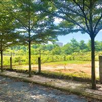 Đất biệt thự phường Tam Phước, Biên Hòa có 300m2 thổ cư
