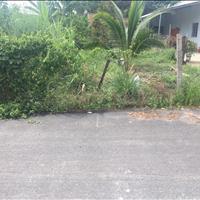 Đất vườn 500 tr/250m2 sát KCN Chơn Thành 1, 2 - Hỗ trợ ngân hàng 50%, công chứng sang tên ngay