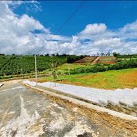 Đất nền Bảo Lộc - mặt tiền 40m - 450m2 (252 m2 thổ cư) giá chỉ 1,7 tỷ đồng