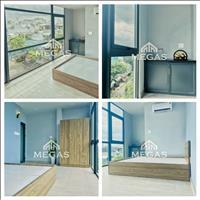 Siêu phẩm căn hộ mini mới tinh tại Tân Phú, 30m2