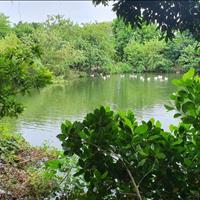 Bán khu sinh thái nhà vườn Đông Mỹ, Thanh Trì, Hà Nội, 2000m2, mặt tiền 25m, giá 2.6tr/m2