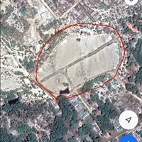 Cần chuyển nhượng 22.000m2 đất thổ xã Tân Phước, thị xã Lagi, giá đầu tư