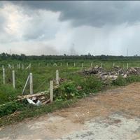 Đất vườn cây lâu năm, 500m2 mặt tiền đường nhựa 8m, sổ hồng riêng, giá chốt 760tr
