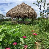 Bán đất vườn Củ Chi 500m2 giá 860 triệu, sổ hồng riêng chính chủ