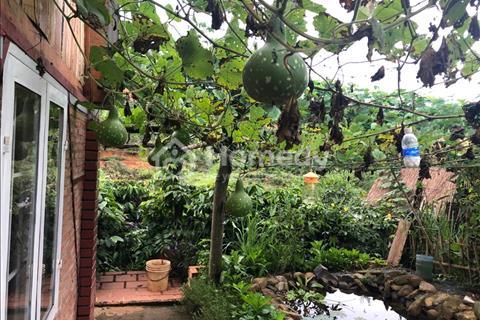 Cần tiền bán gấp trang trại nghỉ dưỡng Lâm Hà, Lâm Đồng