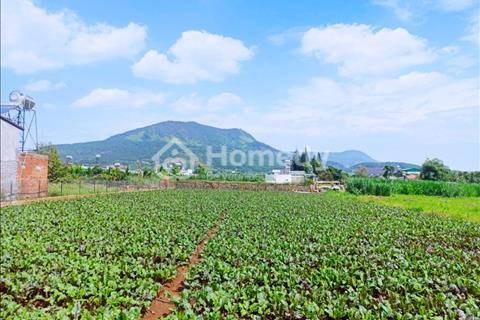 Bán đất nghỉ dưỡng 180 triệu/m ngang ở thôn Bắc Hội, Xã Hiệp Thạnh, Đức Trọng, Lâm Đồng